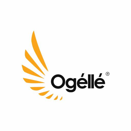 Exclusive Interview with Osita Oparaugo | Ogelle Founder