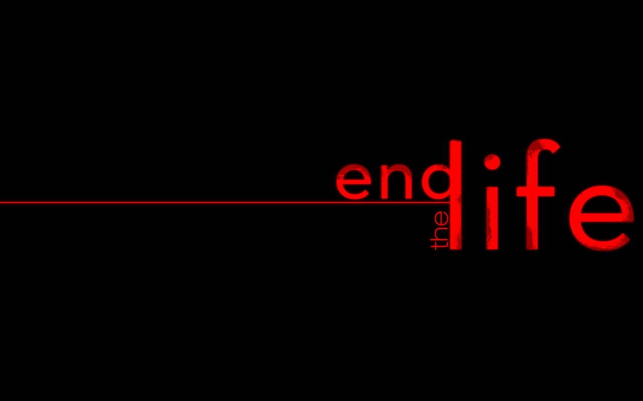 The End Life By Liquifiedsoul D3fuz2n The Amateur S