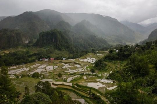 A landscape in Toraja.