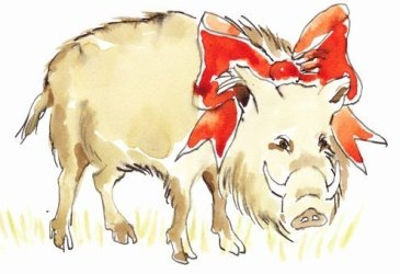 Italy butchers display the boar hanging by their little hooves, often with a red ribbon tucked into their fur.