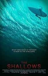 """Blake Lively and a """"Jaws""""-inspired shark are all the fun in this taught thriller."""