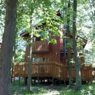 Forest Holidays : Sherwood Forest