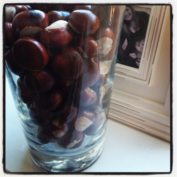 Conkers used in autumn decoration, house