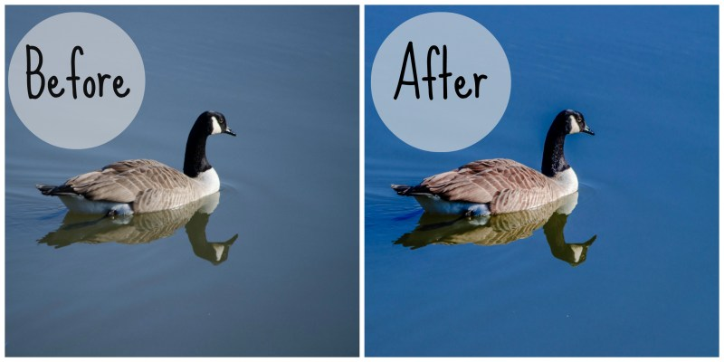 using Adobe, before and after