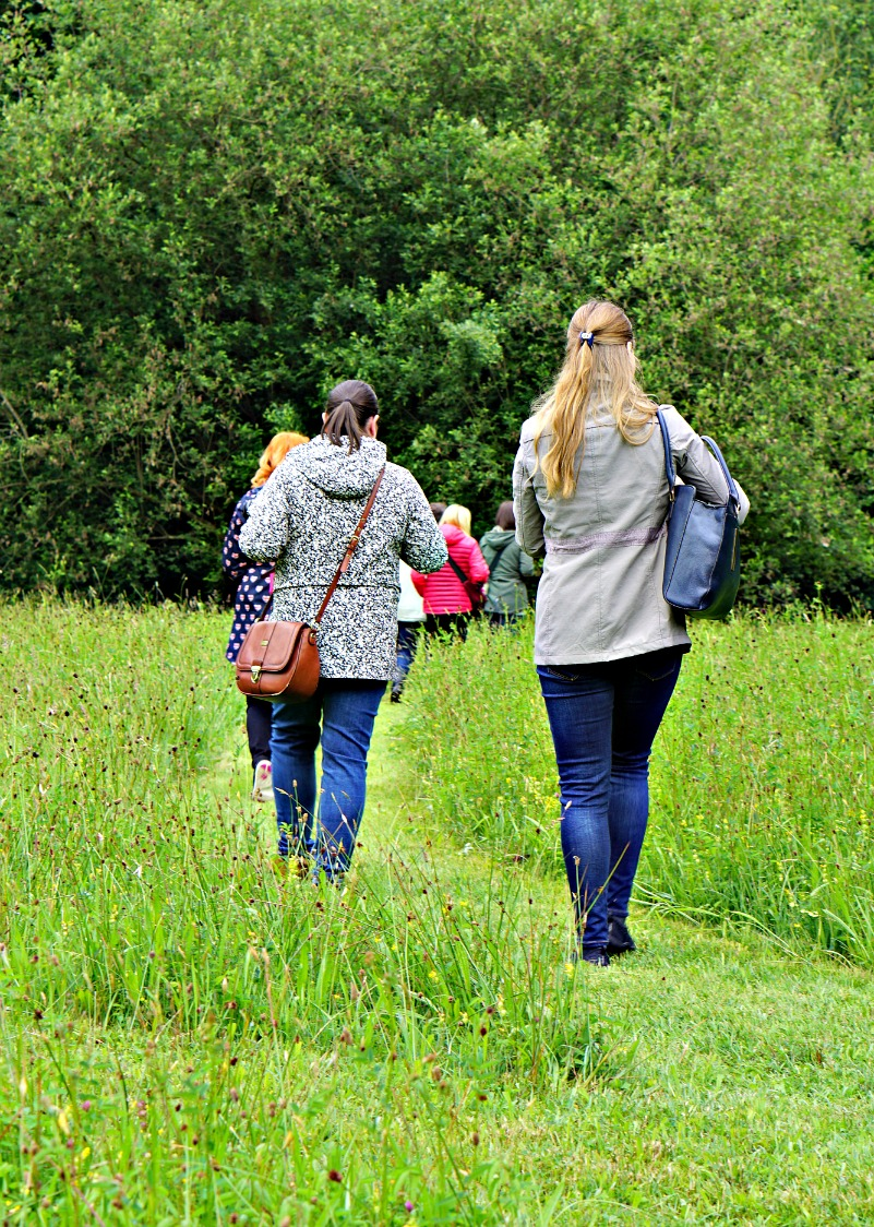 Weleda - Wild flower meadow - insight day, bloggers walking through the field