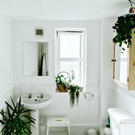 Creating a Family Bathroom that Makes a Big Splash