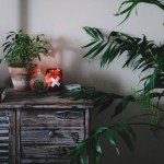 An Earthy Boho Bedroom Makeover Showit Blog