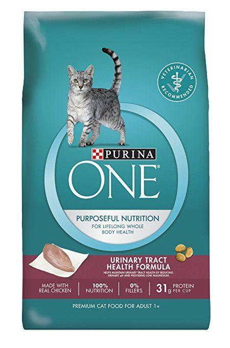 Best cat food for bladder stones