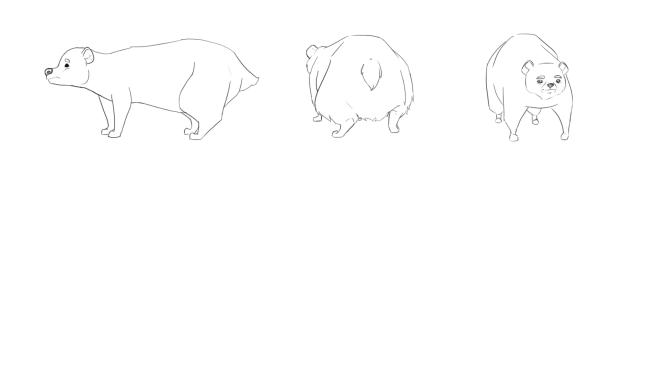 bear_body_shapes_three