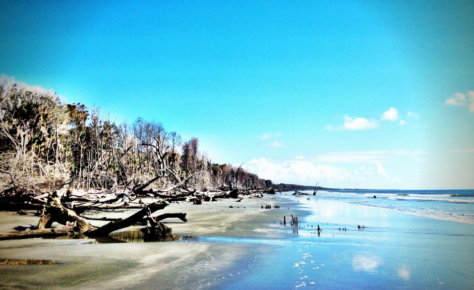The Beauty of Capers Island