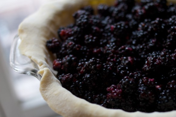 blackberry-pie-5