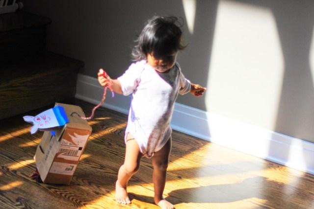 Asha and the cardboard cat