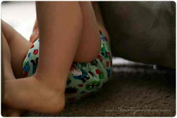 Ella Bella Bum cloth diaper review