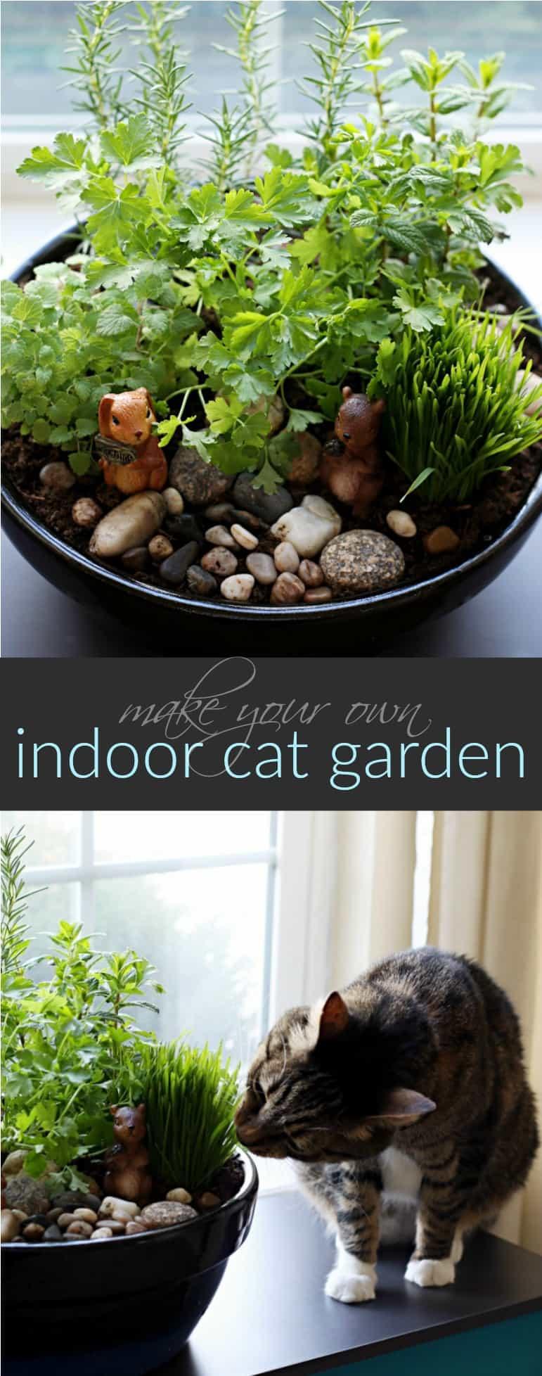 How to Make an Amazing DIY Indoor Cat Garden The AntiJune Cleaver