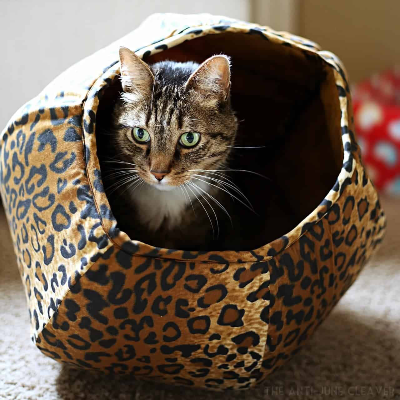 The Cat Ball cat bed: a cozy place for a cat nap @TheCatBall