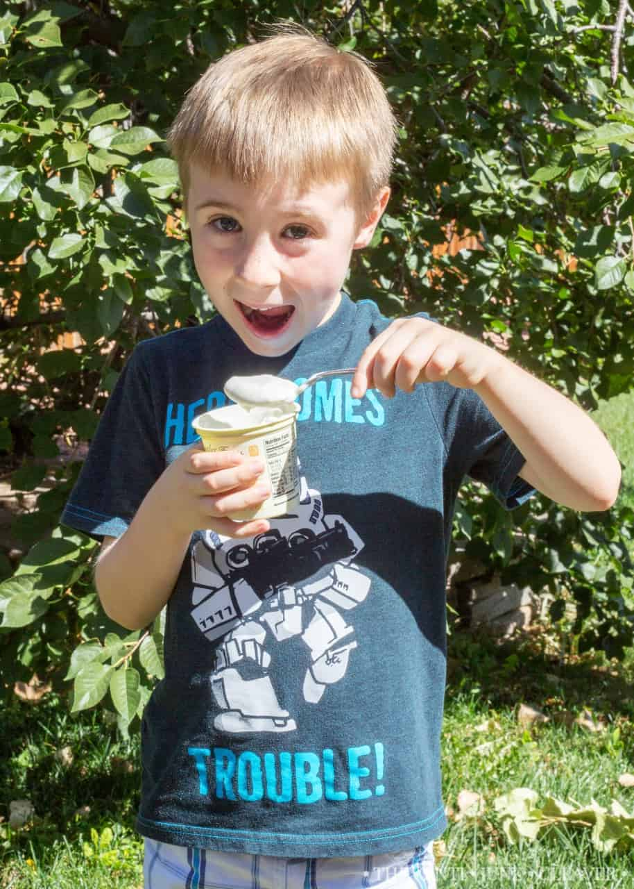 A Quick and Healthy Afternoon Snack #culturedclub #ad @BellwetherFarms