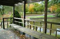Rain_12_LindseyHonkomp_Web