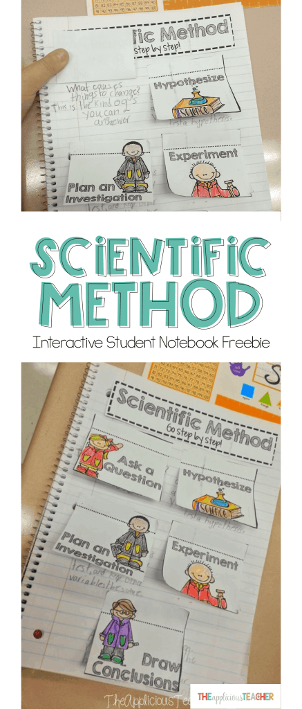 Use this Scientific method interactive student notebook freebie as a way to introduce students to the steps!