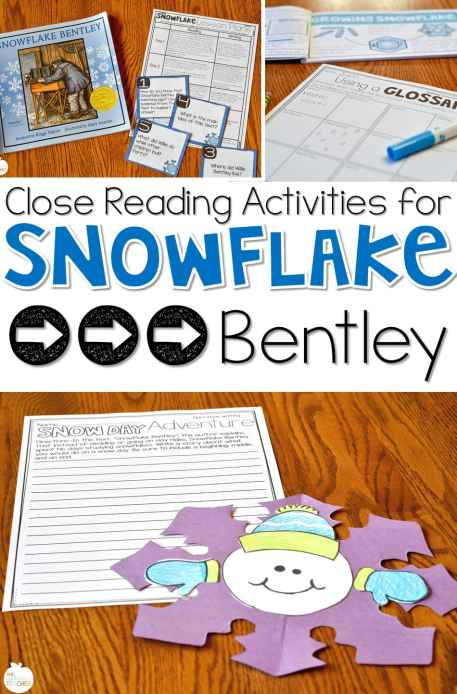 snowflake bentley close reading activities- great activities for main idea and snow