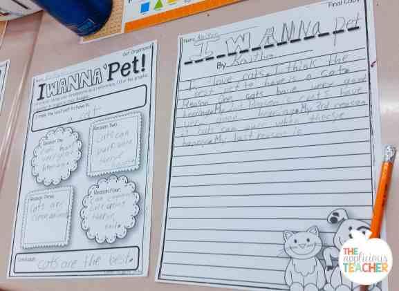 persuasive-writing-pets