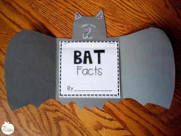 Bat fact book