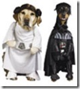 th-30941-41202-dog