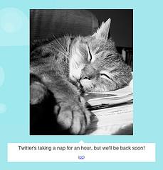 remember fail cat? i do b/c i am an uber tweeter