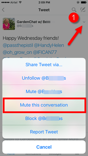 how-to-mute-a-twitter-conversation-on-your-phone