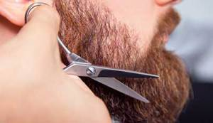 trimming beard with scissors