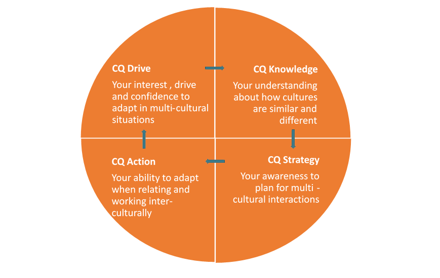 cultural intelligence Cultural intelligence has 16 ratings and 4 reviews tony said: this book looks at how cultural intelligence can help business leaders cross boundaries an.