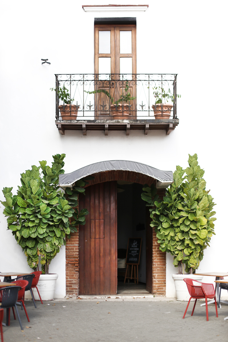 Zona Colonial Rustic Door