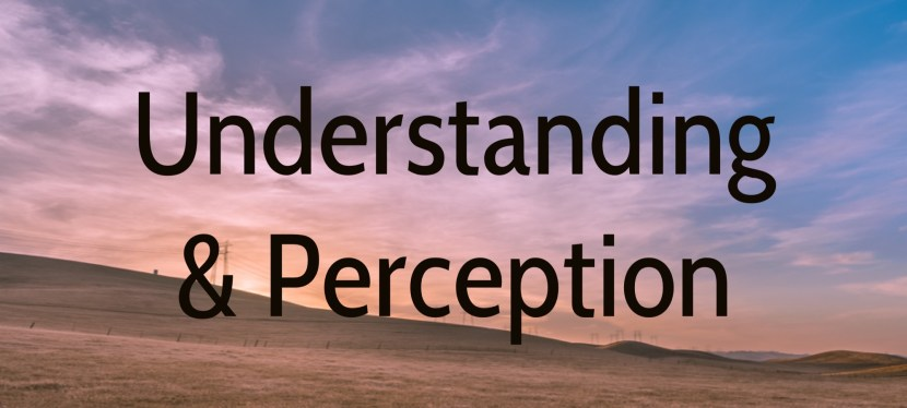 Stephen Covey's Understanding & Perception