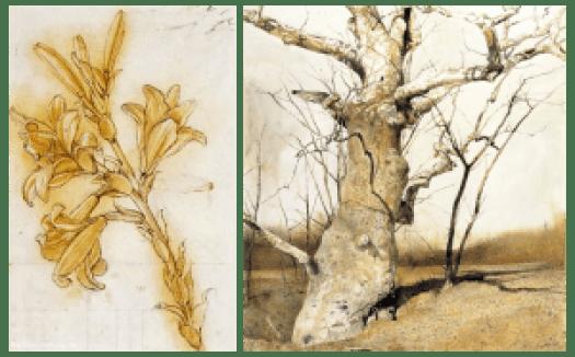 da Vinci Wyeth Comparison
