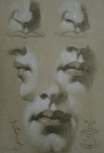 Nose and Mouth Study by John Vanderpoel