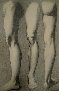 Leg Study by John Vanderpoel
