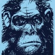 David Witt, Instructor, Grumpy Ape, Screen Print