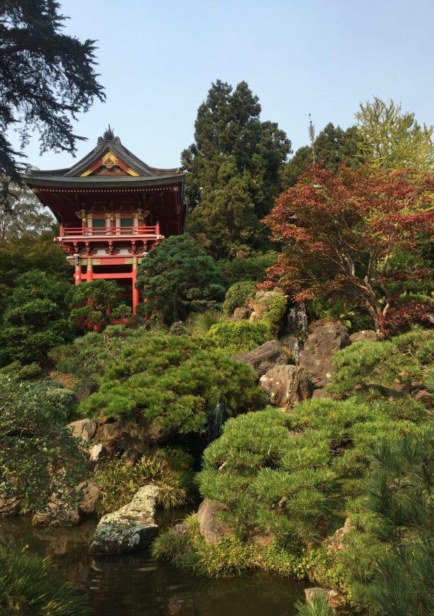 Japanese Garden, Golden Gate Park image by Terry Vatrt