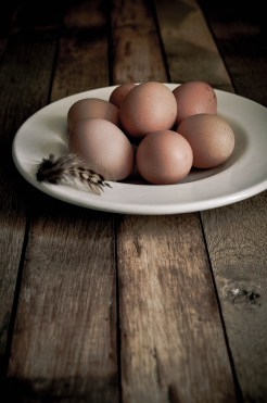 Eggs on china plate