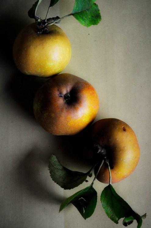 Apples golden2