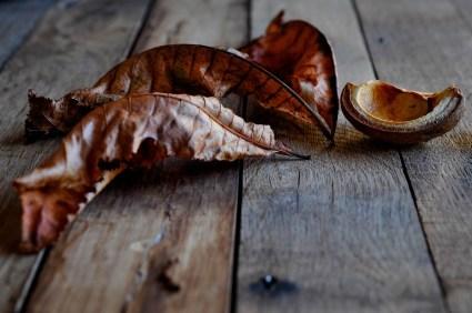 Leaves Kernel_