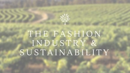 the Fashion industry & Sustainability