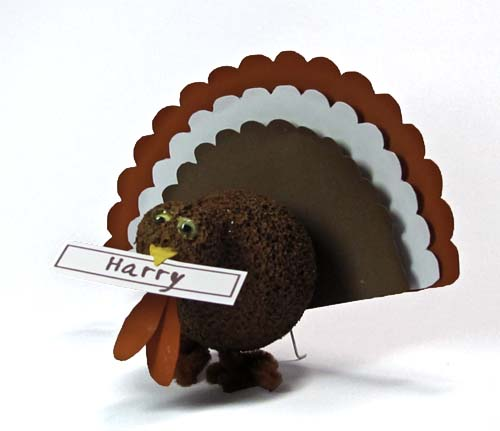 Turkey Place Cards - Hi Harry, This is Your Place