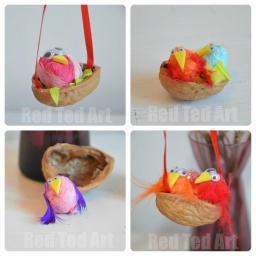 Little-Walnut-Bird-Nests