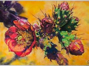 Red Cactus Flower by Gail Steel