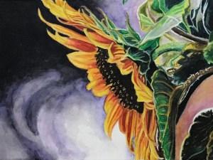 Sunflower Curtsy by Gail Steel