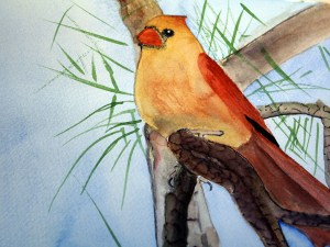 Female Cardinal by Jocelyn Bichard