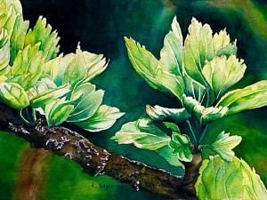 Springtime Greens by Kathy Nay