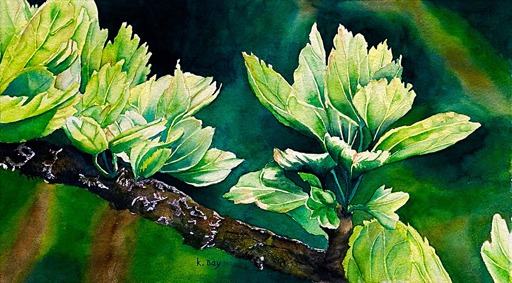 Springtime Greens by Kathy Nay
