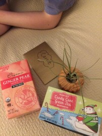 Two yummy teas and a plant I can't kill from Hannah Smith. XO