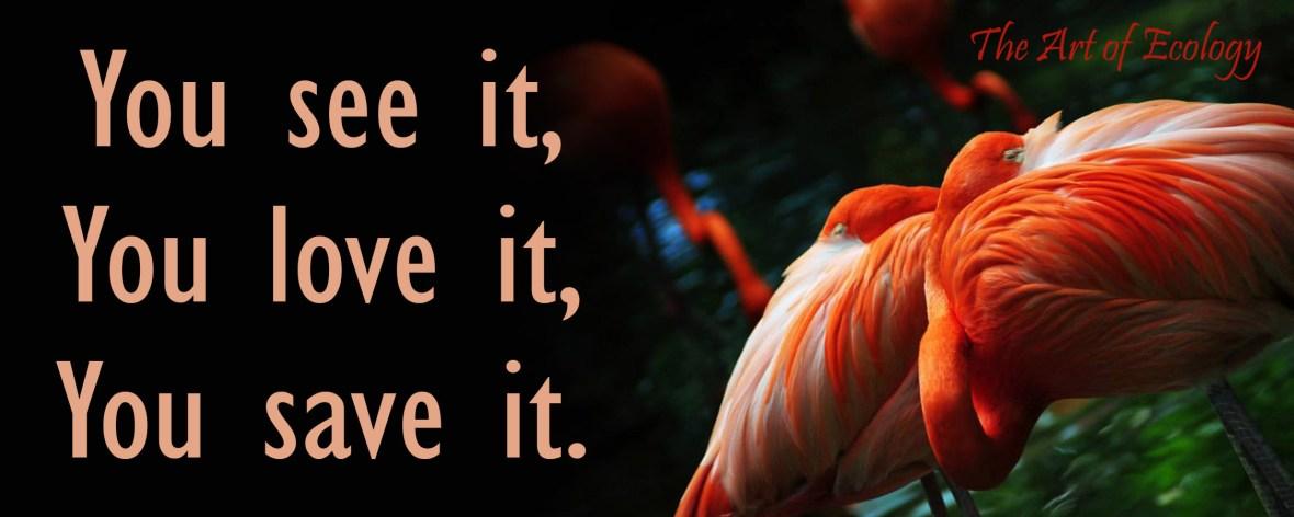 flamingo-sticker-2